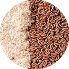 Psyllium Husk Seed