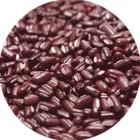 Phaseolus Calcaratus Seed